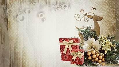 Christmas Elegant Desktop Wallpapers Mobile Frog Background
