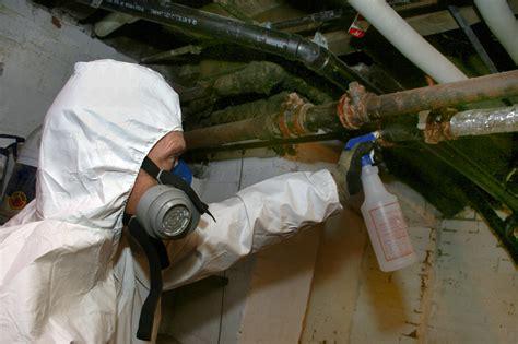 asbestos removal   asbestos removal cost auckland