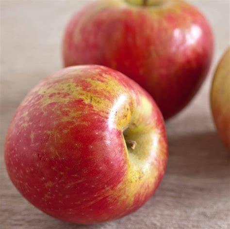 juicing apples peel juice peels tips should