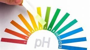 Mineralwasser Ph Wert Liste : hydrogencarbonat gerolsteiner mineralwasser ~ Orissabook.com Haus und Dekorationen