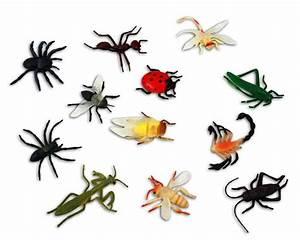 Insekten Im Haus : preview ~ Lizthompson.info Haus und Dekorationen