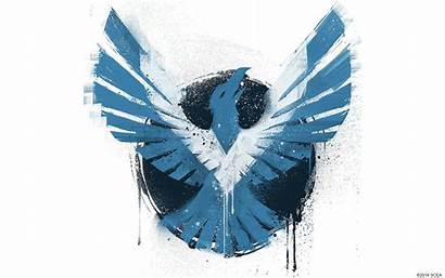 Infamous Son Second Wallpapers Background Karma Bird