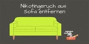 Hundehaare Vom Sofa Entfernen : nikotingeruch aus sofa entfernen so wird 39 s gemacht ~ Bigdaddyawards.com Haus und Dekorationen