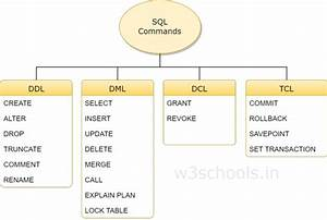 Mysql What Is Ddl  Dml And Dcl