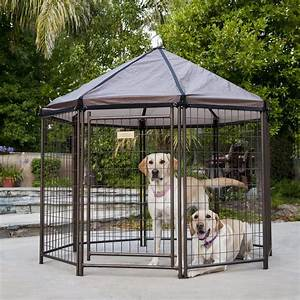 advantek pet gazebo modular outdoor dog kennel petco With shop dog kennels