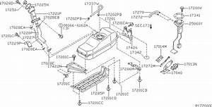 Genuine Nissan Xterra Parts Diagram  Nissan  Auto Wiring Diagram