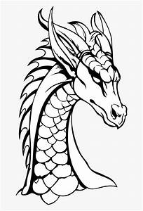 Dragon Neck The Head Of The Free Picture - Dragons Black ...