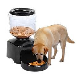electronic cat feeder automatic feeders