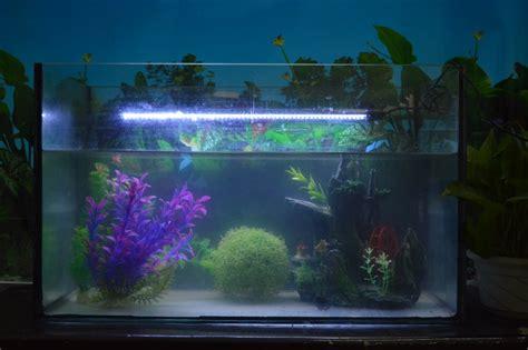 fabriquer eclairage led aquarium fabriquer eclairage led aquarium 28 images best aquarium table basse photos transformatorio