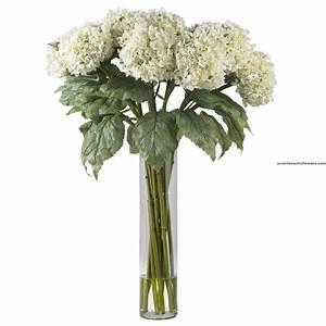 Lovely Hydrangea Flower Arrangement - Flower