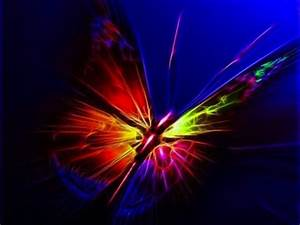 Neon Butterfly graphy & Abstract Background