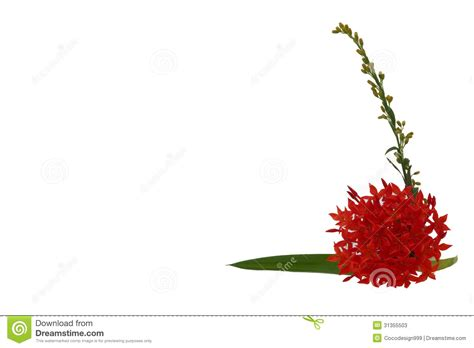 flower spikes clipart clipground