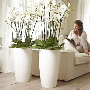 Große Deko Vasen : die besten 25 bodenvase dekorieren ideen auf pinterest glas bodenvase dekorieren bodenvase ~ Markanthonyermac.com Haus und Dekorationen