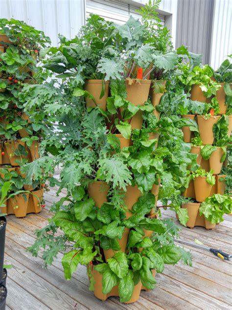 Can You Grow In A Vertical Garden by All About Growing Kale Greenstalk Vertical Garden
