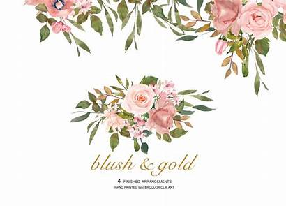 Rose Watercolor Gold Clipart Flower Blush Leaves