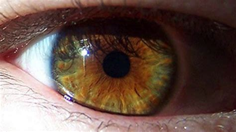 eye color change your eye color to hazel in 10 seconds hypnosis