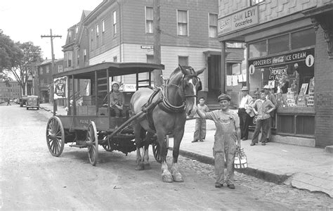 Horse-drawn Milk Delivery, 1948