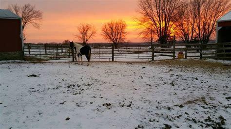 Horse Boarding Farms In Platteville
