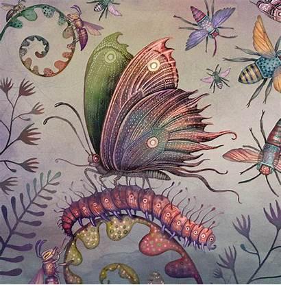 Illustrations Lenticular Vlad Moths Piccalilli Album