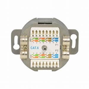 Cat 6 Stecker : netzwerkdose cat 6 dose anschlussdose f r 2x rj45 stecker anschluss aufputz dose gigabit ~ Frokenaadalensverden.com Haus und Dekorationen