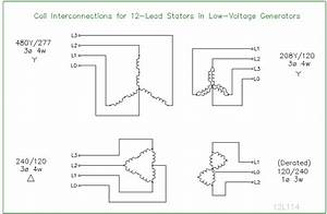 12 Lead Stator Generators Schematics