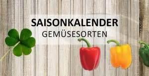 Wann Süßkartoffeln Ernten : salat hat immer saison saisonkalender wiressengesund ~ Buech-reservation.com Haus und Dekorationen