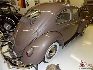 1955 Vw Beetle Oval Window Show Quality Restoration