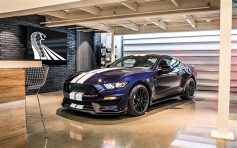 wallpaper shelby gt   automotive cars