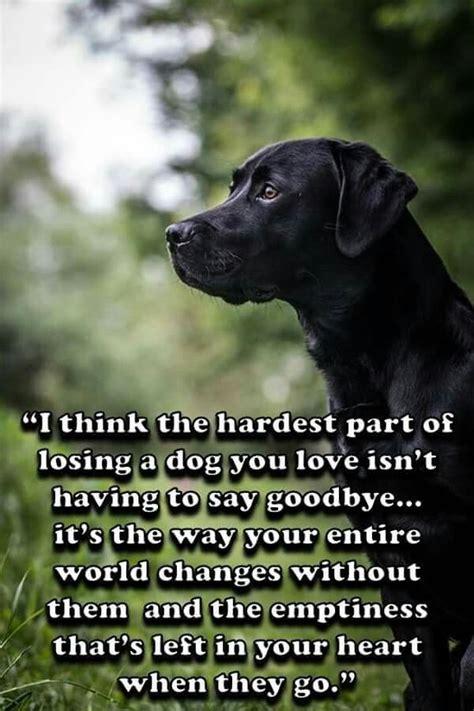 hard   goodbye ill  forget