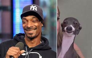 Snoop Dogg's Secret Soft Spot That Everyone Needs to Know ...