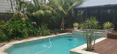 what to plant around a pool choosing and caring for plants around your pool