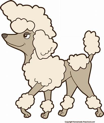 Poodle Clipart Dog Clip Cartoon Mini Library