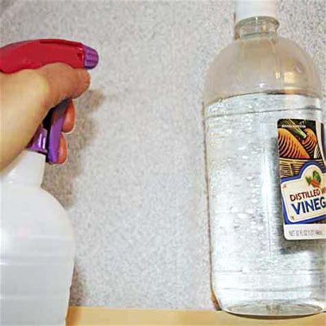 Scenery Wallpaper Wallpaper Removal Vinegar
