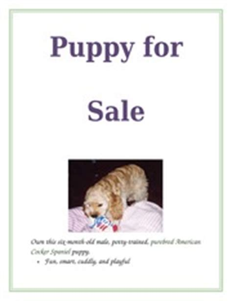 Puppy For Sale Flyer Templates by Puppies For Sale Flyer Template Exploredogs