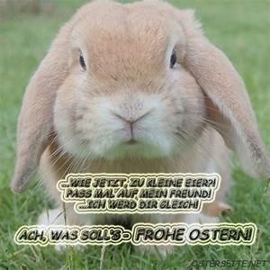 Ostergrüße Per Whatsapp : ostergr e bilder f r whatsapp und email ~ Frokenaadalensverden.com Haus und Dekorationen