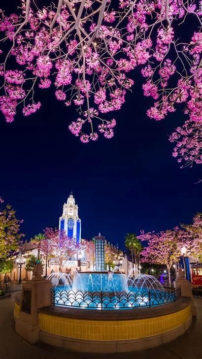 Disney Iphone Wallpapers Plus Disneyland Spring 6s