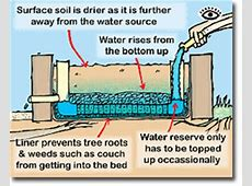 From the Bottom Up A DIY Guide to Wicking Beds The