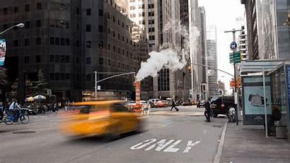 Nyc Street Business Contaminacion Del El Move