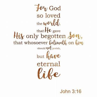 Bible John Loved God Verses Verse Inspirational