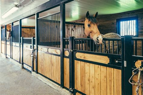 gallery  european horse stalls fabulous homes interior