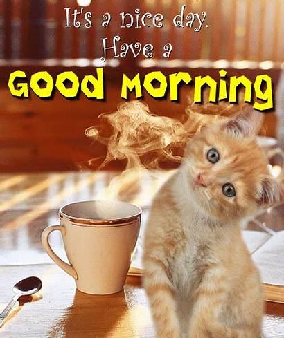 Morning Card Greetings Ecards 123greetings Ecard