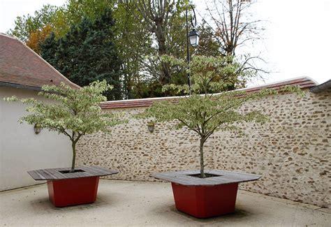 quel arbre en pot galerie photos bacs sur mesure image in les bacs 224 arbre image in font office de table de jardin