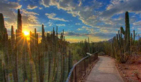 scottsdale arizona attractions my family travels