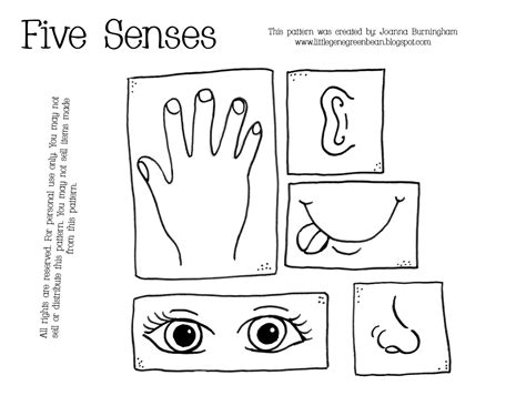 free printable five senses teach your toddler his