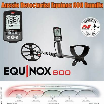 Equinox Detector Metal Detectorist Minelab Detecting