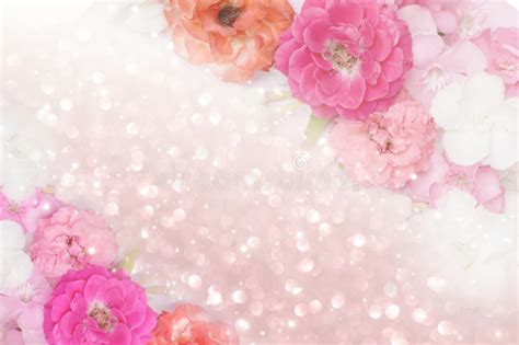 Pastel Pink Roses Border Pictures To Pin On Pinterest