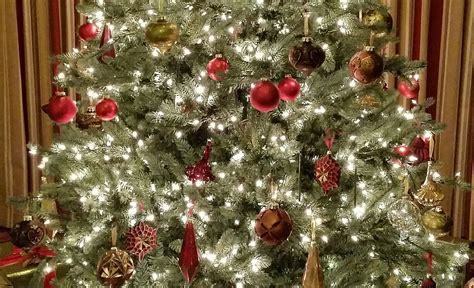 recycle christmas tree woodlands residents