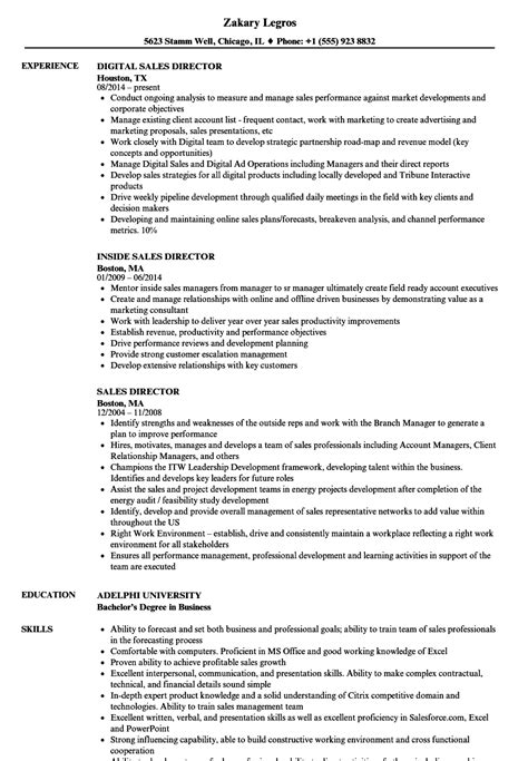 Sales Director Resume by Sales Director Resume Sles Velvet