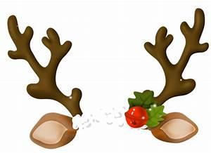 Reindeer Antler Horn - Reindeer png download - 640*464 ...