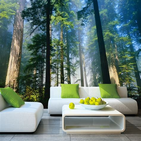 papel murals forests wallpaper nature fog trees  wall